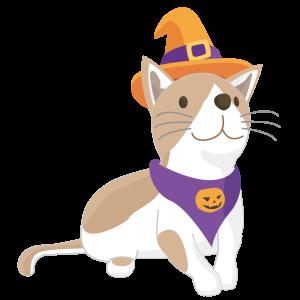 ハロウィン仮装 猫